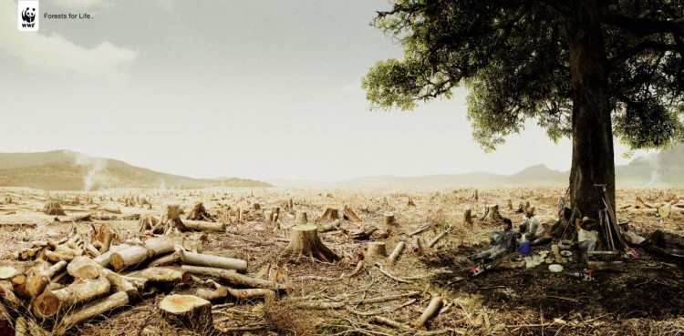 wwf-forests-for-life-gr