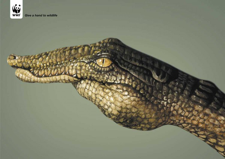 wwf-crocodile