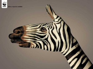 Good intentions 2008: give a hand to wildlife