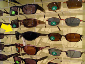 Sunglasses for KNGF Guidedogs