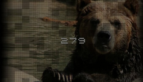 save-the-grizzly-website