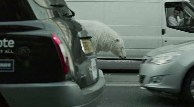 A-Homeless-Polar-Bear-in-London-Greenpeace