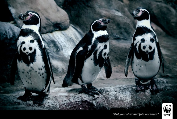 Put-your-shirt-on-and-join-to-our-team-pingus-wwf