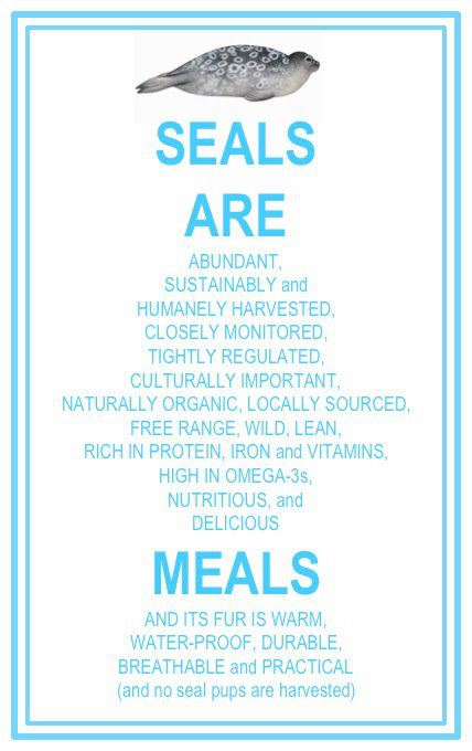 seals_are_meals