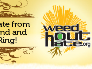 Weed Out Hate…Plant Seeds of Peace