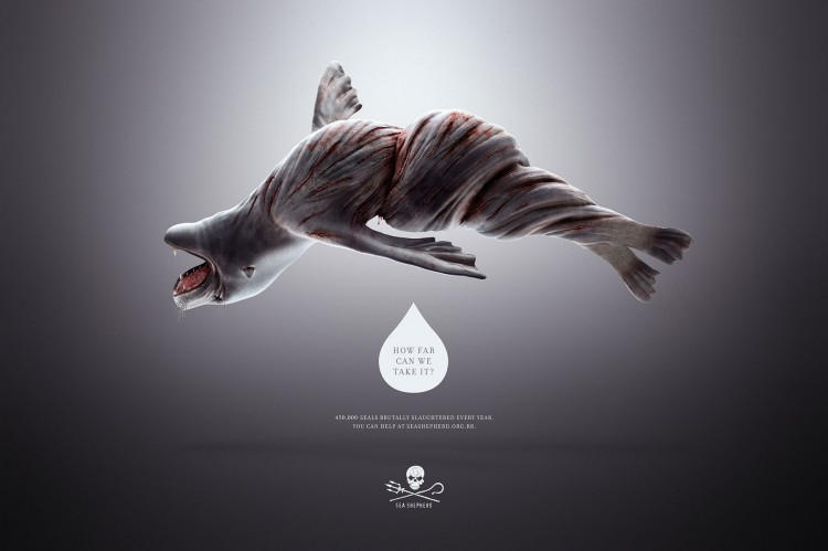Sea Shepherd Conservation Society (SSCS) Brazil: Twisted Seals and Whales. How far can we go?