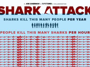 Sharks vs. Humans: Guess who is winning? [infographic]