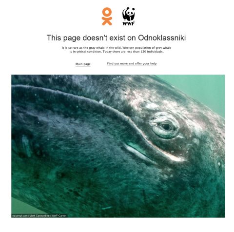 WWF: Gray Whale Not Found