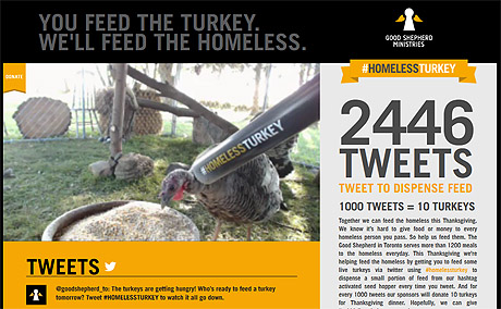 #HomelessTurkey tweets feed turkeys people alike