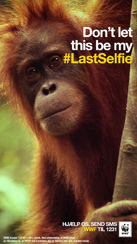WWF warns you with Snapchat for the #LastSelfie