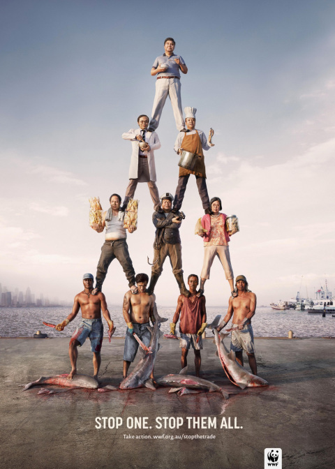 WWF: The Pyramid scheme of slaughter