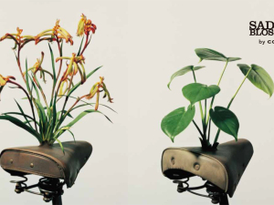 Saddle Blossoms: The exhibition of bicycles' abandoned time