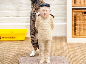 Let your cat doing the activist work with this scratching post