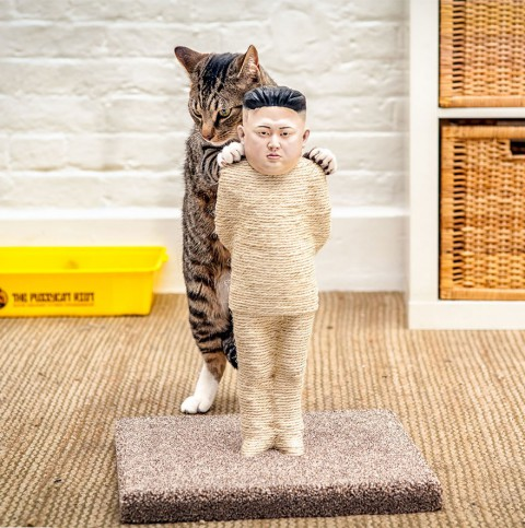 Let your cat doing the activist work with this scratching post from Kim Jong-un