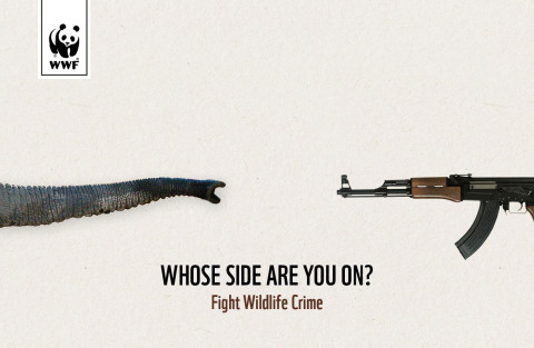 WWF Fight Wildlife Crime