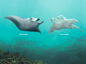 These plastic creatures can survive in the ocean for centuries