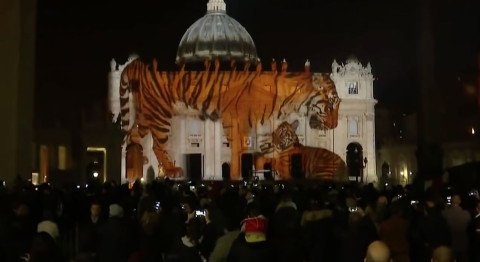 Endangered species took over the Vatican in spectacular public art project