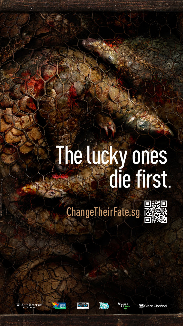 Change Their Fate – Harrowing Wildlife Reserves Singapore Campaign To Combat Illegal Wildlife Trafficking