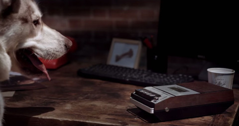 Animal charity releases humorous dog detective video calling for tighter measures on classified ad sites